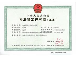 Judicial authentication permit